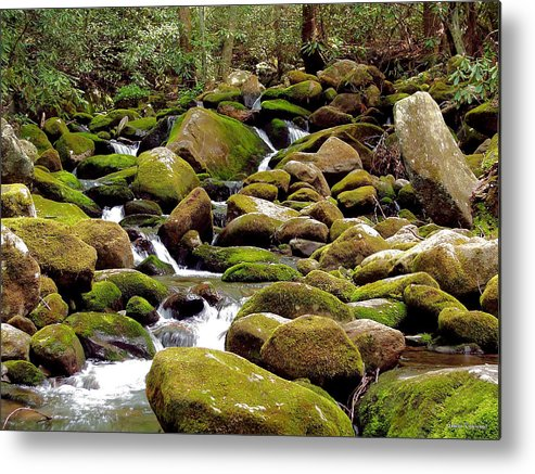 Nature Metal Print featuring the photograph Mountain Stream by Johann Todesengel
