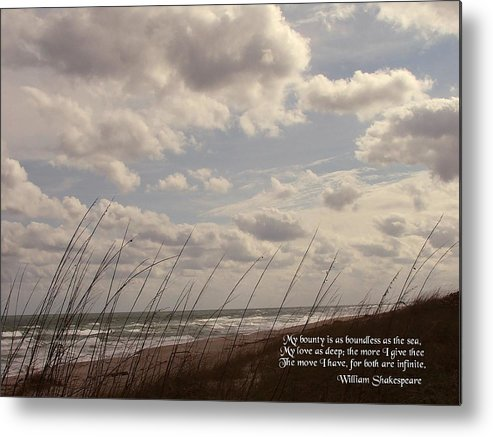 Seascape Metal Print featuring the photograph My Bounty by Judy Waller