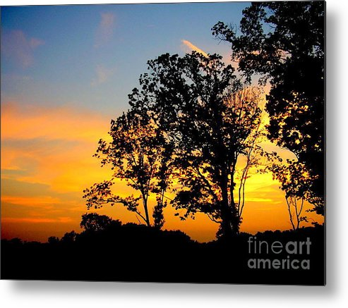 Sunset Metal Print featuring the photograph Natural Art by Lindsay Felty