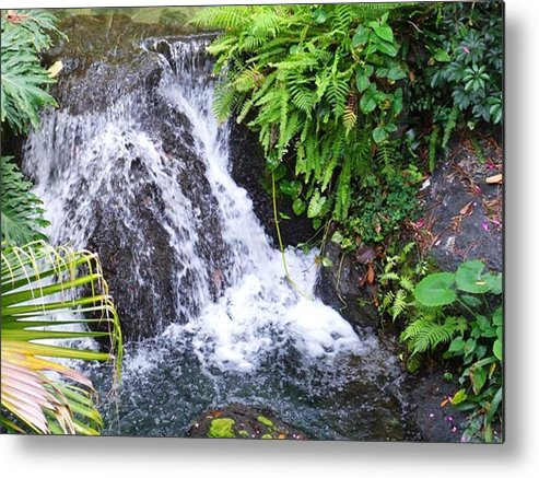 Water Metal Print featuring the photograph Natural Beauty by Rana Adamchick