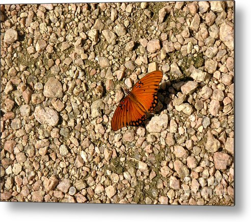 Nature Metal Print featuring the photograph Nature In The Wild - A Splash Of Color On The Rocks by Lucyna A M Green
