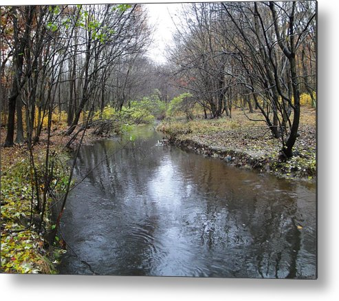 Autumn Landscape Metal Print featuring the photograph Nature by Leonard Holland