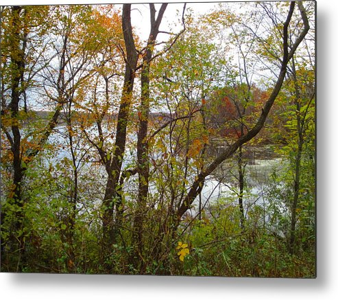 Autumn Landscape Metal Print featuring the photograph Nature's Expression-11 by Leonard Holland
