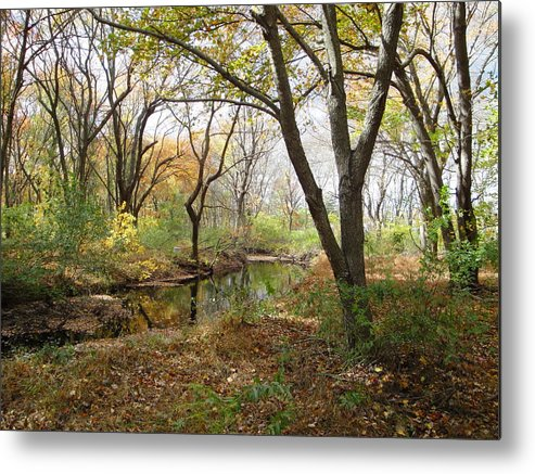 Landscape Metal Print featuring the photograph Nature's Expression 21 by Leonard Holland
