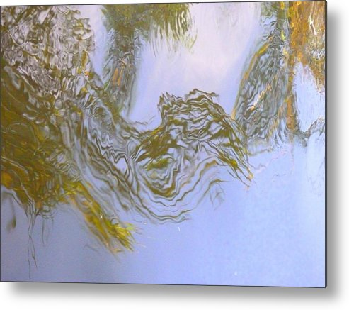 Nature Metal Print featuring the photograph Natures Mirror by Florene Welebny