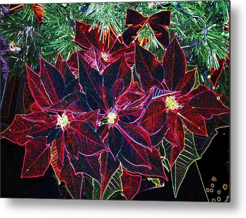 Flowers Metal Print featuring the photograph Neon Poinsettias by Nancy Mueller