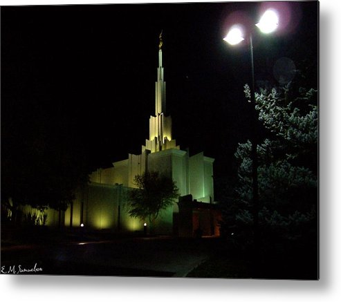 Building Metal Print featuring the photograph Nighttime View by Elise Samuelson