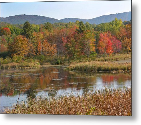 Fall Foliage Metal Print featuring the photograph October by Peter Williams