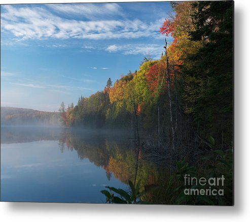 Lake Metal Print featuring the photograph Ontario Autumn Scenery by Oleksiy Maksymenko