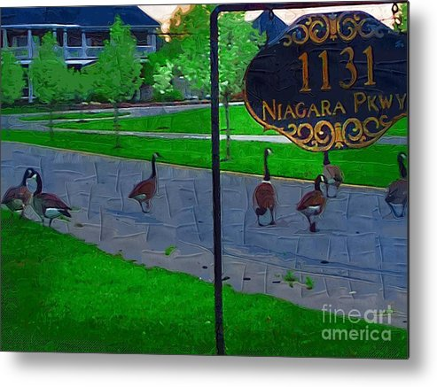 Canadian Geese Metal Print featuring the painting Out For A Stroll by Deborah Selib-Haig DMacq