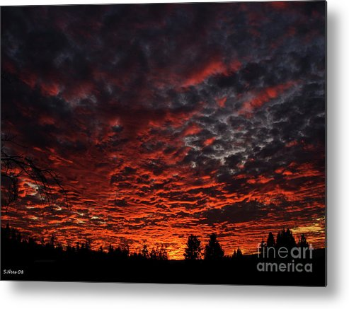 Sunset Metal Print featuring the photograph Palette Of Colors by Shari Nees