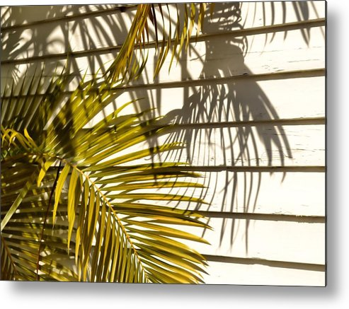 Palm Metal Print featuring the photograph Palm Sunday by JAMART Photography