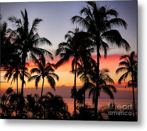 Palm Tree Metal Print featuring the photograph Palm Tree Silhouettes by Trudee Hunter