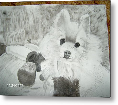 Dog Metal Print featuring the drawing Pepe by Tina Brown