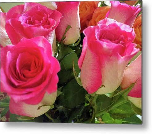 Flowers Metal Print featuring the photograph Pink Fog by Ludy Ortiz