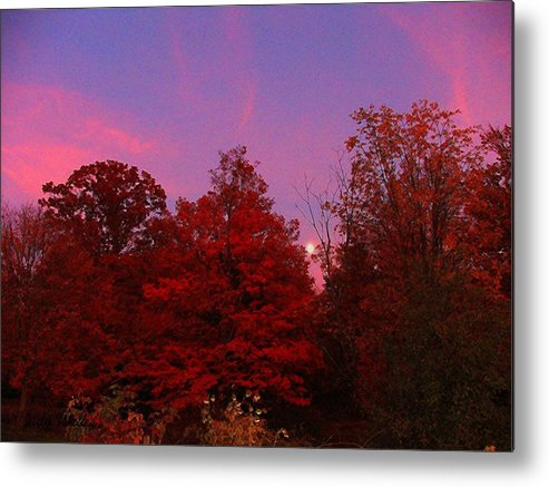 Moon Metal Print featuring the photograph Pink Moonlite Night by Judy Waller