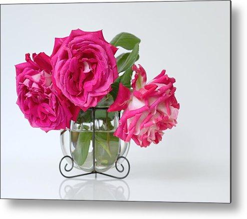 Pink Roses In A Vase Metal Print By Ivora Obrazy