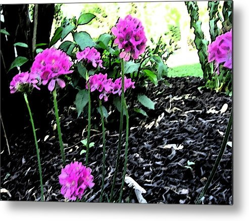Floral Metal Print featuring the painting Pinks by Mary Sonya Conti