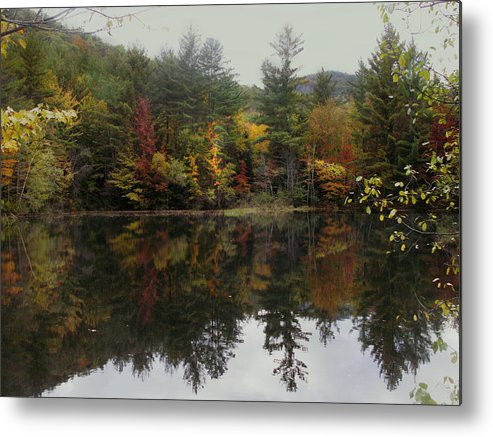 Landscape Metal Print featuring the photograph Pond In Jackson by Nancy Griswold