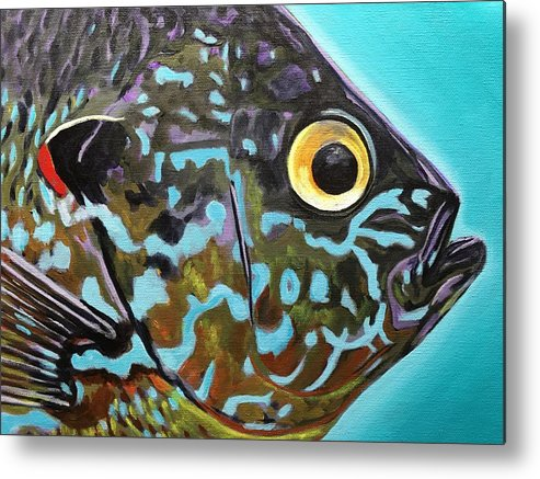 Fish Art Metal Print featuring the painting Pumpkinseed by Phil Watford