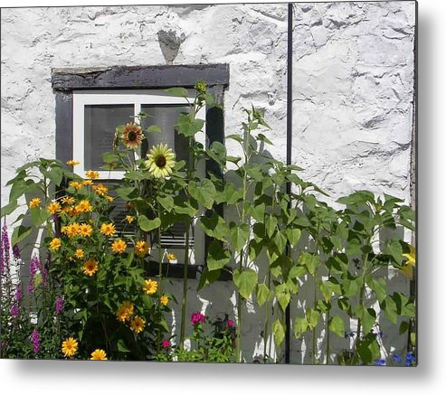 Quebec Garden Metal Print featuring the photograph Quebec Floral by Nancy Ferrier