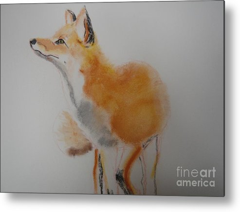 Red. Fox Metal Print featuring the pastel Red Fox by Angela Cartner