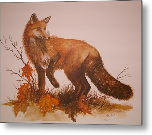 Nature Metal Print featuring the painting Red Fox by Ben Kiger