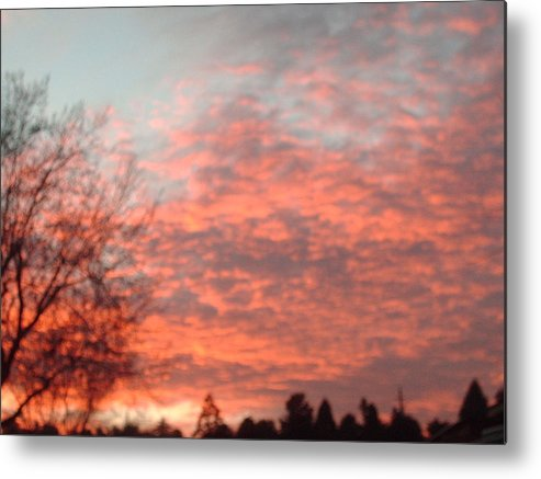 Metal Print featuring the photograph Red Skies by Jennifer Wall