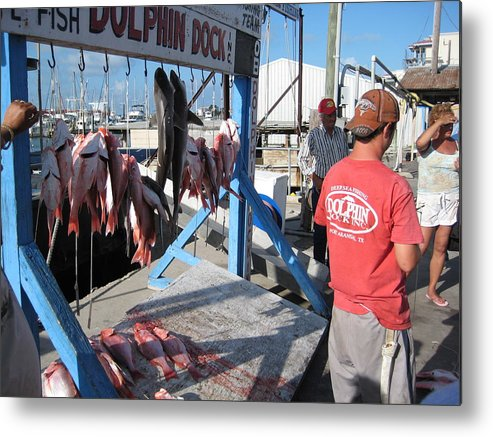 Island Metal Print featuring the photograph Red Snapper Catch by Wendell Baggett