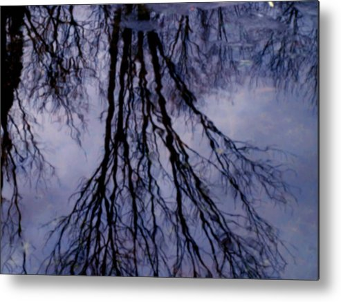 Water Metal Print featuring the photograph Reflections In Pond by Susan Grissom