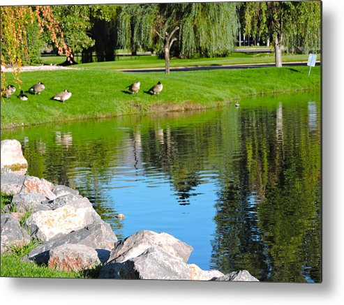 Reflections Metal Print featuring the photograph Reflections by Roberts Photography