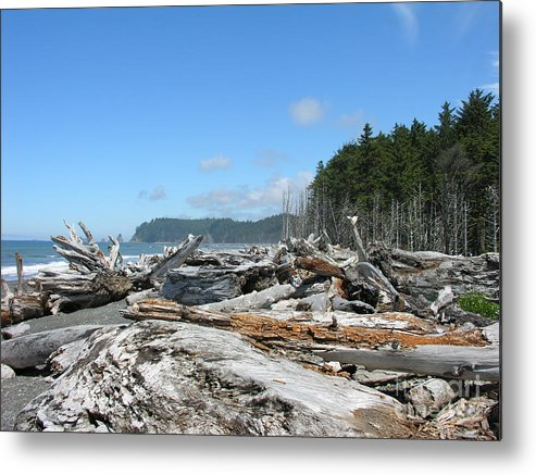Rialto Beach Washignton Metal Print featuring the photograph Rialto Beach Washington by Diane Greco-Lesser