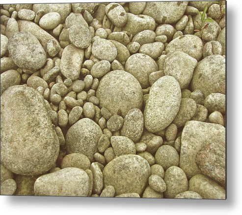 River Metal Print featuring the photograph River Carpet by JAMART Photography
