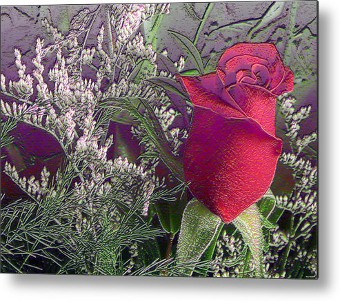 Rose Photography Metal Print featuring the photograph Rose And Babies Breath by Evelyn Patrick