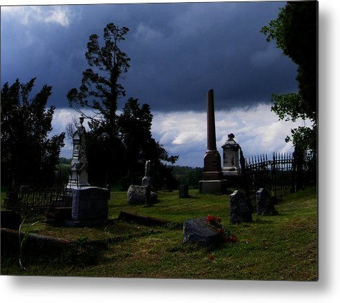 Landscape Metal Print featuring the photograph Roses After The Storm by Rachel Christine Nowicki