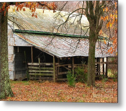 Rural Metal Print featuring the photograph Rural by Amanda Barcon