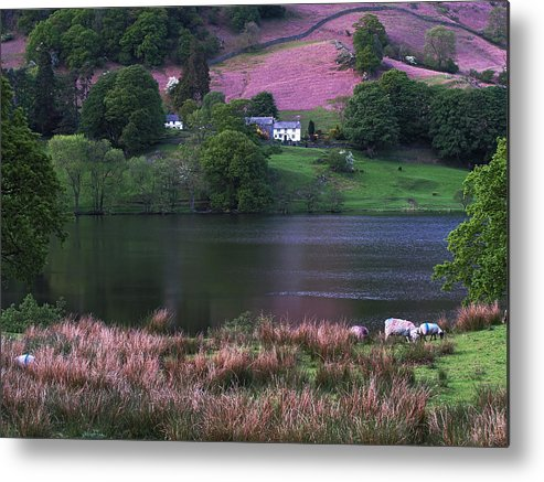 Water Metal Print featuring the photograph Rydal Water by Steve Watson
