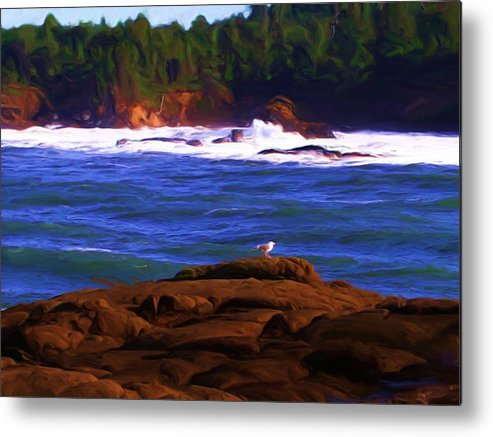 Seascape Metal Print featuring the painting Seagull On Rock by Shelley Bain
