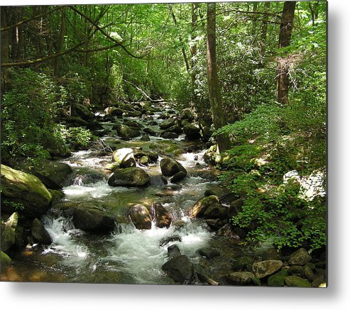 Mountain Stream Metal Print featuring the photograph Serenity by Diane Frick