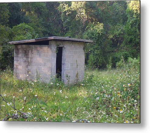 Nature Metal Print featuring the photograph Shed The Old by Stephanie Richards