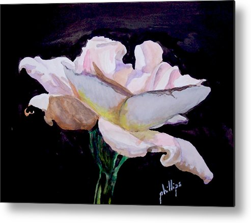 White Rose Metal Print featuring the painting Single White Rose by Jim Phillips
