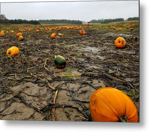 Pumpkin Metal Print featuring the photograph Smashing Pumpkins by Scott Perkins