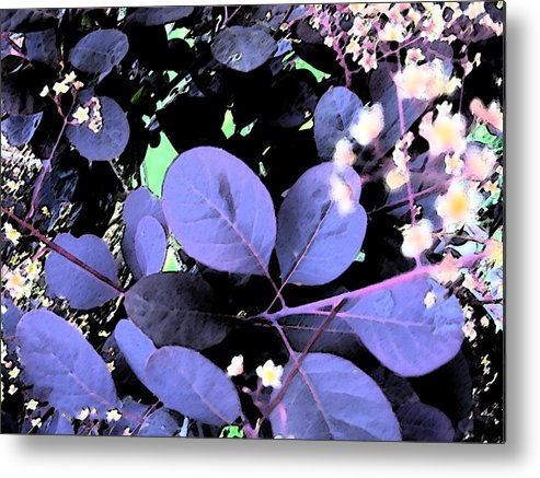 Lea\ves Metal Print featuring the painting Smoke Tree Blues by Mary Sonya Conti