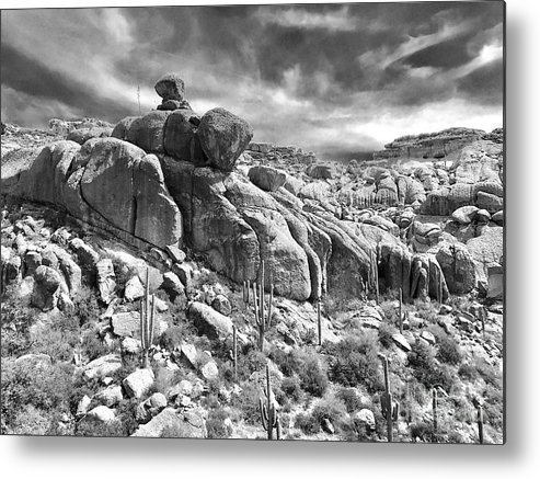 Photography Metal Print featuring the photograph Sonora Desert by Sean Griffin