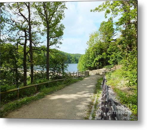 Wood - Lake - Trees - Path - Sky Metal Print featuring the photograph Spring Memories by Chris Horsnell