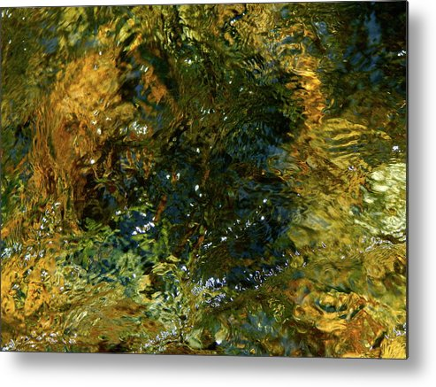 Color Close-up Landscape Metal Print featuring the photograph Spring 2017 162 by George Ramos