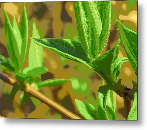 Leaves Metal Print featuring the photograph Spring by Julie Pacheco-Toye