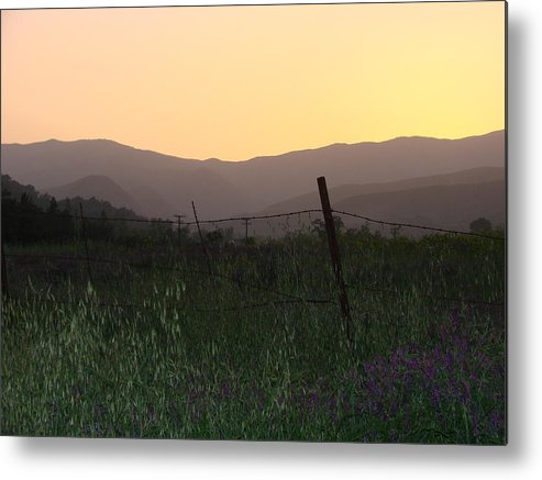 Sunset Metal Print featuring the photograph Spring Sunset by Liz Vernand