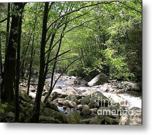 Nature Metal Print featuring the photograph Springtime In The Smoky Mountains by Barb Montanye Meseroll