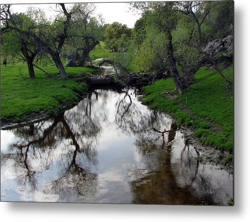 Spring Metal Print featuring the photograph Springtime Reflections by Chris Gudger